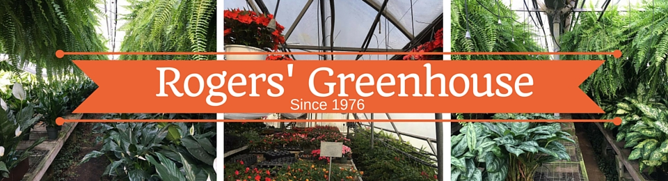 Rogers' Greenhouse